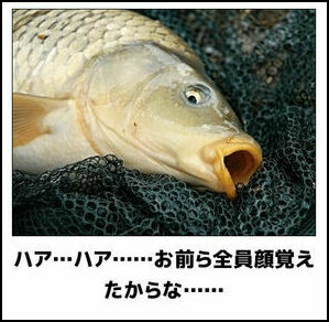 に を やら た 魚 餌 ない 釣っ 釣った魚に絶対餌はやらない。
